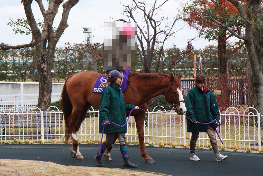 hanshin-racecourse_4